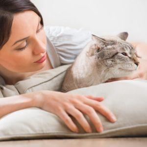امراض القطط للبنات
