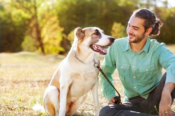 قم بفحص الكلب بشكل سنوي ولا تهمل في زيارة الطبيب البيطري