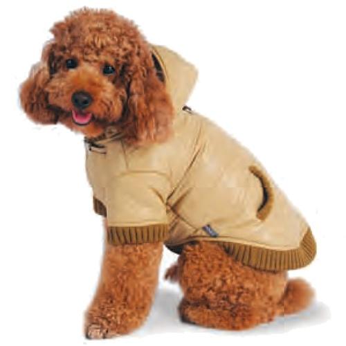 يمكنك شراء معطف او رداء للكلب للوقاية من البرد في الشاء