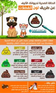 لون الفضلات يحدد بعض الأمراض التي تصيب الكلاب والقطط